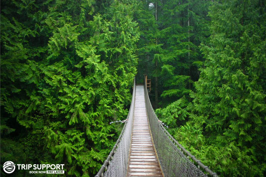 A Bridge in Vancouver