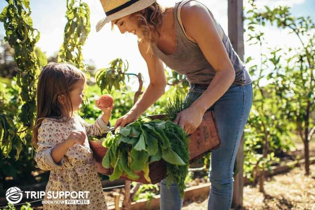 Local Farms for your Family