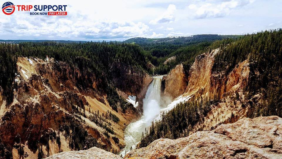 Summer in Yellowstone National Park